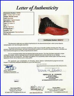 Michael Jordan Signed Autographed Air Jordan 12's Shoes Flu Game Size 13