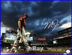 Mike Trout Los Angeles Angels Signed Autographed 16x20 Photo MLB Authentic